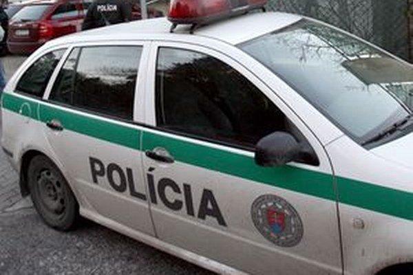 Starostu Vyšného Skálnika zastavila policajná hliadka pohotovostnej motorizovanej jednotky 8. júna v obci Hrachovo.