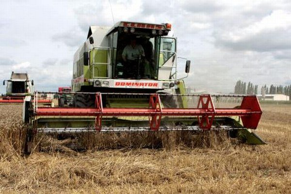 Tento rok budú bez herbicídov.