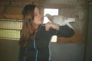 Janka so svojimi holubmi súťaží približne päť rokov. Medzi kolegami je často jedinou ženou