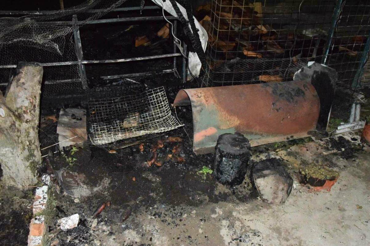 """9d105de79 Majiteľ sa snažil oheň zahasiť vlastnými silami, ale nepomohlo to a zavolal  hasičov. """"Po uhasení sme zistili, že došlo k úmrtiu štyroch pávov,"""" uviedli  ..."""