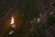 Na snímke parafínová svieca, ktorá sa používa na ochranu pred mrazom v ovocnom sade firmy Plantex v obci Veselé v okrese Piešťany.