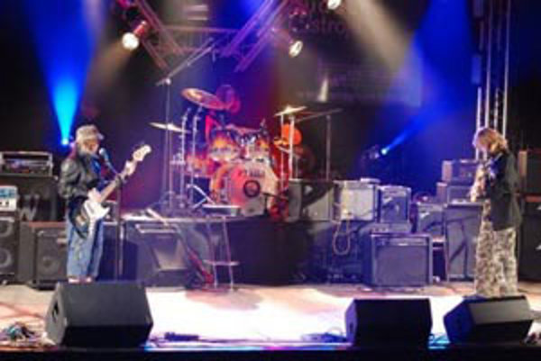 Žáner skupiny Tyger by sa dal charakterizovať ako zmes punku, hard rocku a oldies.