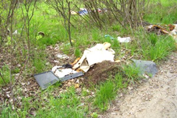 Pri príležitosti Dňa zeme chystajú samosprávy, ale aj  združenia  akcie na zbieranie odpadkov.