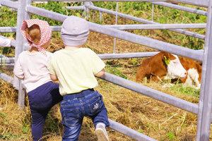 Deň mladého farmára.