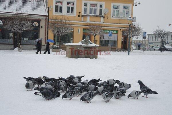 Sneh v Trenčíne.