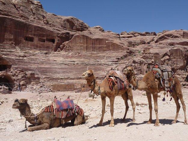 Do púšte Wadi Rum sa môžete vydať aj na ťavách.
