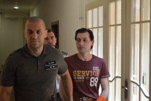 Michaila Chatzitheodoridisa súd uznal vinným zo spáchania brutálnej vraždy svojej expriateľky.