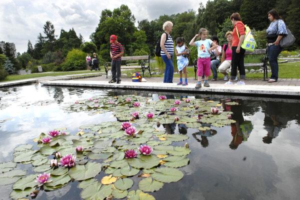 Opravovať sa bude aj vonkajší bazén pre vodné rastliny.