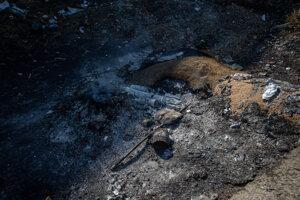 Po príchode na bývalé družstvo v Dvoriankoch pri Trebišove privítalo reportérov SME ticho a takéto tlejúce ohnisko. Nikde nebolo nikoho, hoci družstvo bolo otvorené dokorán.