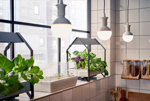 Série Växer a Krydda na celoročné pestovanie byliniek a šalátov. Vľavo skleník, kde na minerálnej vlne zakoreňujú rastliny, vpravo kultivačná jednotka na rast.