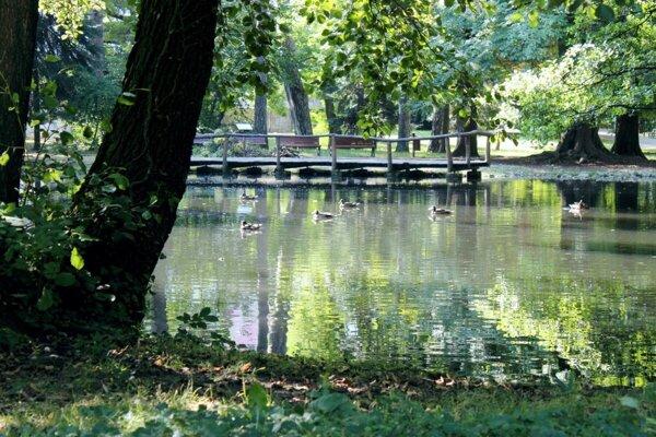 Zámokcý park v Pezinku