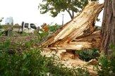 Strom poškodil vedenie, na nábreží Dunaja nepremávajú električky