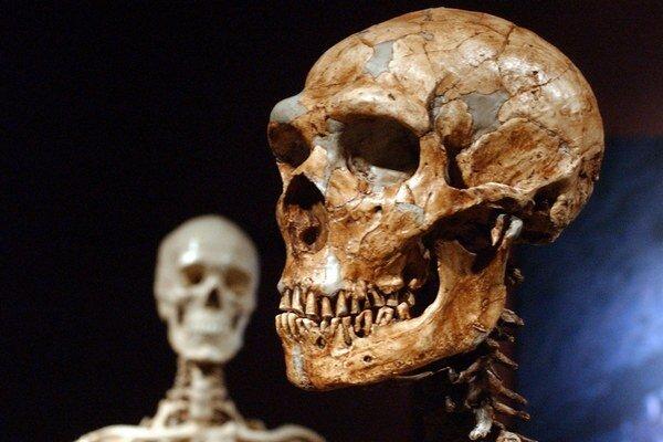 Moderní ľudia sú čiastočne neandertálcami.