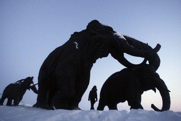 Rusi tvrdia, že našli dobre zachované mamutie mäso aj krv (vpravo).