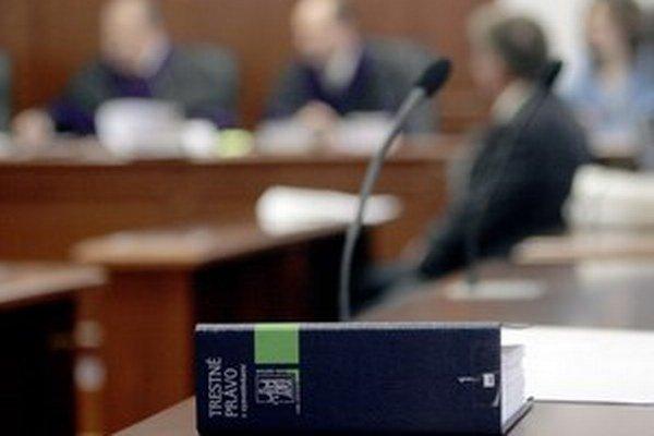 Záväzné znenie zákonov už o dva roky nemusí mať písomnú podobu, štát ho chce dať na web.