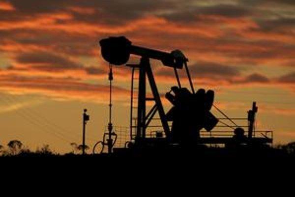Napriek tomu, že ropy je dostatok, jej cena v posledných dvoch týždňoch výrazne stúpla. Investori dúfajú, že ekonomická kríza je na ústupe.