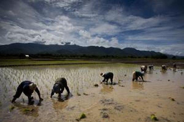 Cena potravín bude v najbližších desaťročiach stúpať.
