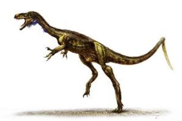 Dinosaurích objavov bolo v poslednom čase viacero. Pred dvomi týždňami informoval magazín Science, že našli nový druh dinosaura, ktorý je zrejme predchodcom tyranosaura.