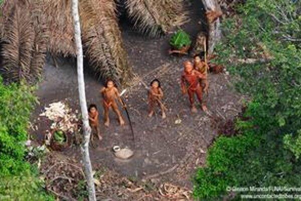 Domorodý kmeň ohrozuje nelegálny výrub pralesa.