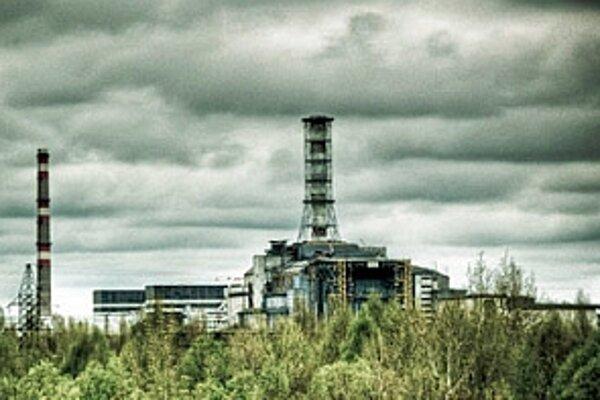 Výskum o prispôsobení sa rastlín kontaminovanej pôde v Černobyle zaujal aj za slovenskými hranicami.
