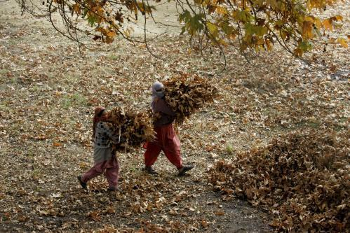 jesen-srinagar2_tasrap.jpg