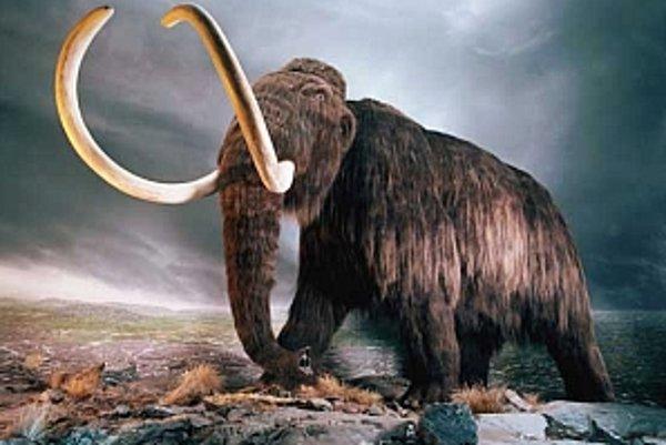 Vyhynutie mamutov azda môže za ochladenie planéty.