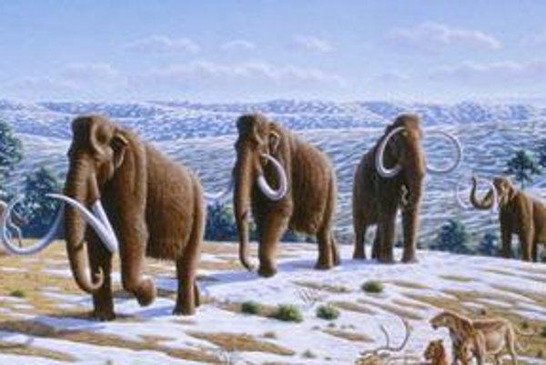 Mamuty boli na zimu dobre pripravené.