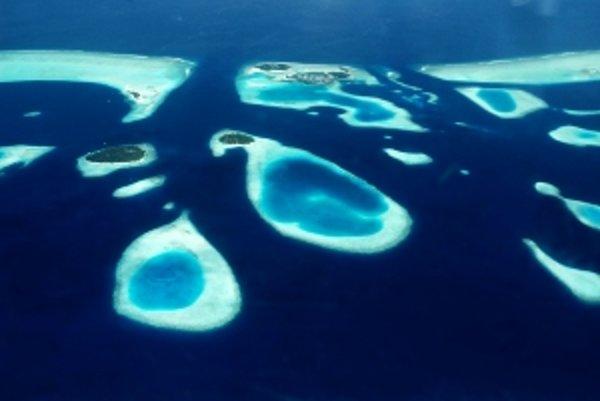Maldivy.