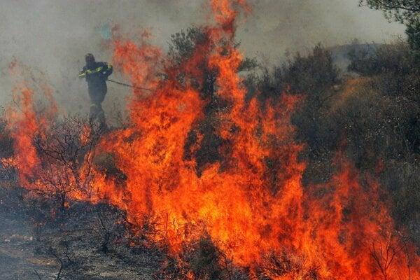 Vypaľovanie porastov bylín, kríkov a stromov je zákonom zakázané.