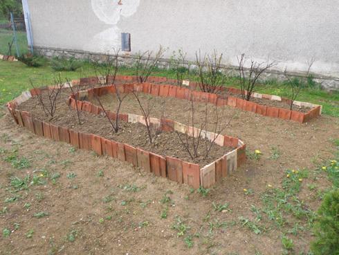 zahrada9_r7890.jpg