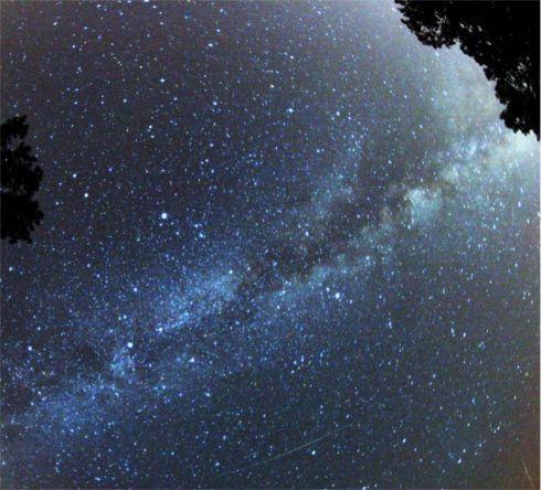 perseid_meteor_r7607.jpg