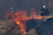 Hasiči bojujú s lesným požiarom pri meste Robore v Bolívii.