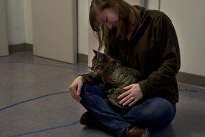 Mačka, ktorá má neistú väzbu s človekom a veľmi na ňom lipne.