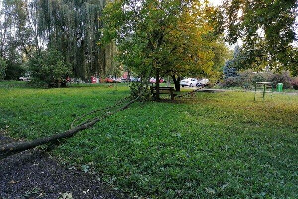 Strom sa na Severnej zrútil na detské ihrisko a chodníček.
