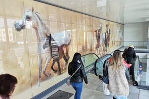 Grafika koní si vyslúžila kritiku vyhlasovateľov súťaže Brutus.