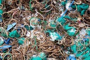 Elastické gumičky nájdené vo vývratkoch vtákov na opustenom ostrove Mullion.