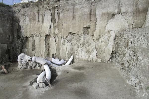 Pasce boli 1,7 metra hlboké a v priemere mali 23 metrov.