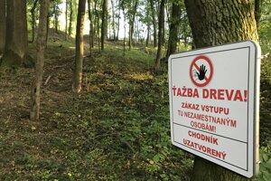 Lesopark Brezina