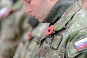 Vlčí mak sa stal symbolom veteránov.