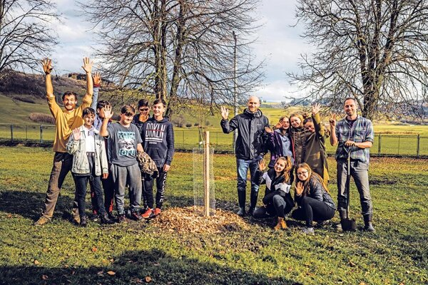 Starostlivosť a azda aj radosť spojená s rastom stromov a následným využívaním úrody sa začína.