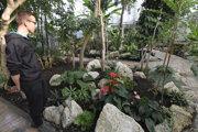 Skleník botanickej záhrady.