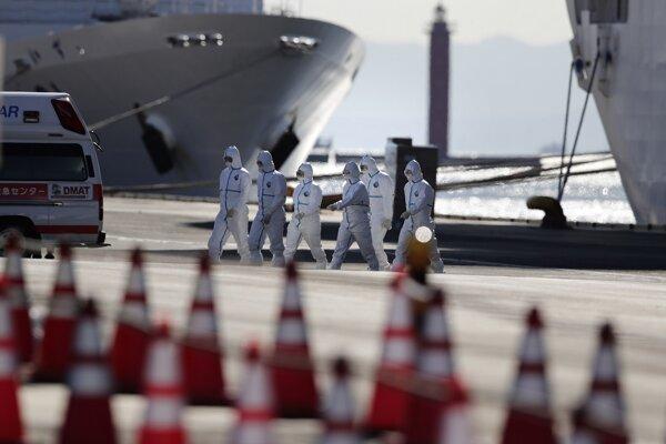 Loď zakotvila v Jokohame 3. februára po tom, ako sa u jej bývalého pasažiera, ktorý vystúpil v Hongkongu, potvrdila nákaza koronavírusom.