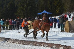 Marek a jeho kôň Bandy.