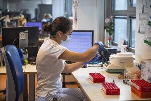 Testovanie vzoriek na koronavírus.