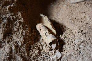 Ilustračná fotografia. Kus zvinutého pergamenu, ktorý objavili v jednej z Kumránskych jaskýň.