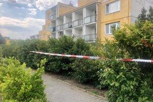 Okolo budovy zariadenia bolo vytvorené ochranné pásmo.
