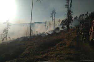 Zasahovalo 74 profesionálnych a dobrovoľných hasičov s 14 kusmi hasičskej techniky.