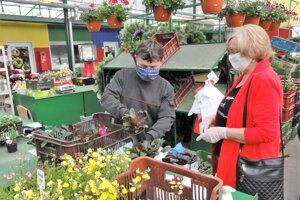 Uplynulý štvrtok sa otvorila aj topoľčianska tržnica. U M.Dubného zBojnej, ktorý predával balkónové kvety aletničky, bol najväčší záujem omuškáty.