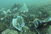Fotografia od Organizácie Operation Clean Sea pri Antibes.