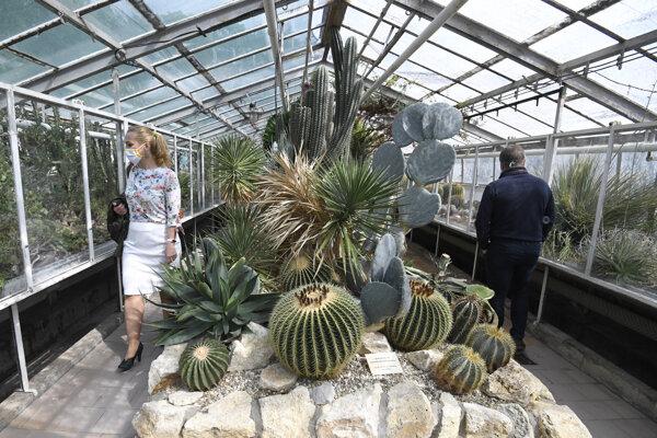 Od stredy sa návštevníci záhrady môžu poprechádzať aj v skleníkoch.